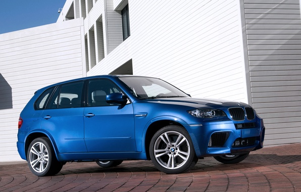Picture machine, Auto, Blue, BMW, BMW, Day, The building, SUV