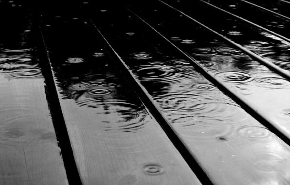 Picture water, drops, macro, rain, Board, drop, Board, rains