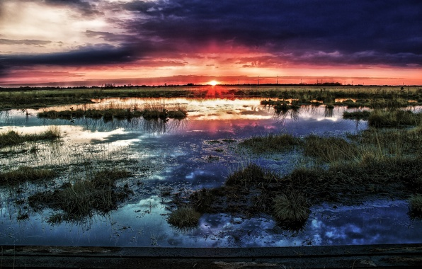 Picture the sun, sunset, clouds, swamp, horizon