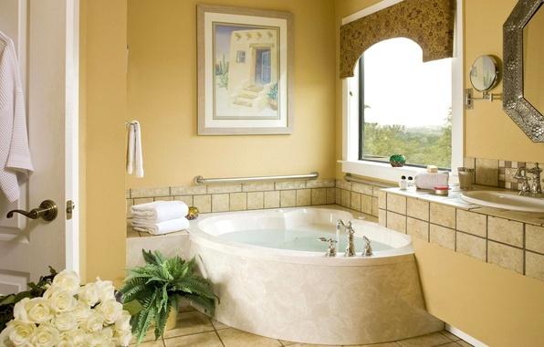 Picture flowers, picture, mirror, window, bath, sink, bathroom