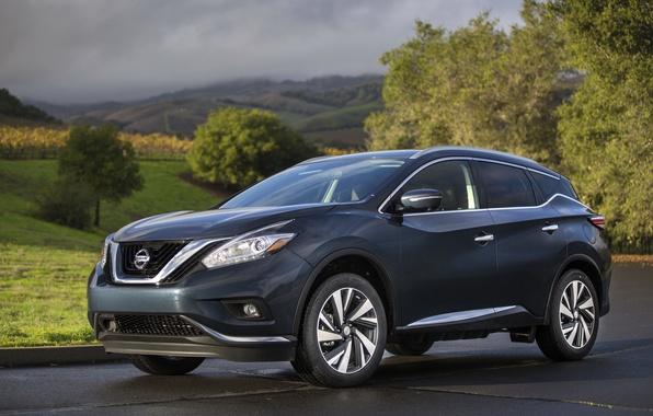 Picture Nissan, Nissan, 2014, Murano, Murano
