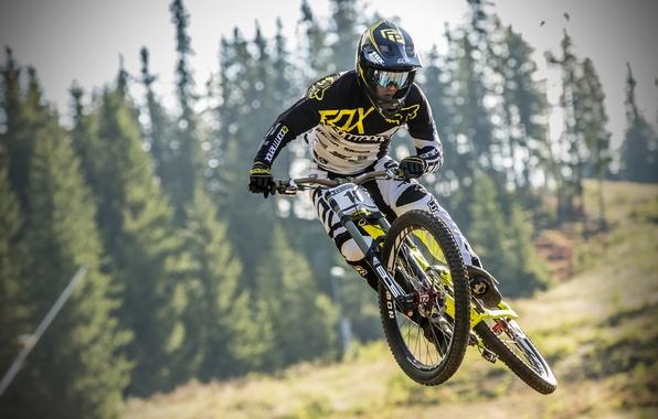 Picture bike, race, sport