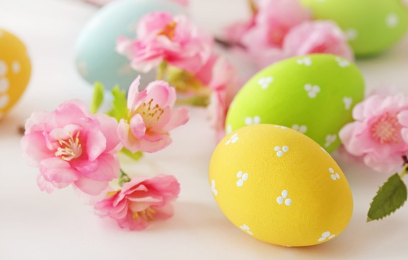 Picture flowers, eggs, Easter, flowers, Easter, eggs, delicate