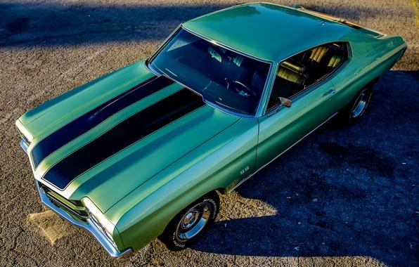 Picture retro, Chevrolet, muscle car, classic, Chevelle