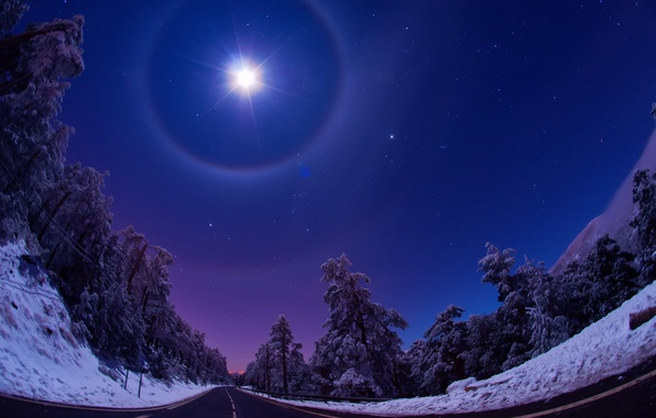 Picture road, forest, the sky, stars, light, snow, night, the moon, Nature, Winter