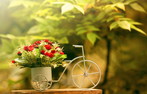 Picture flowers, bike, background, roses