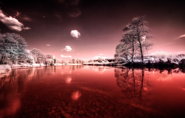 Picture winter, summer, the sky, grass, leaves, clouds, snow, trees, nature, reflection, river, horizon, negative