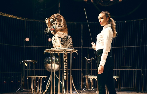 Picture girl, tiger, the taming of the, Christy