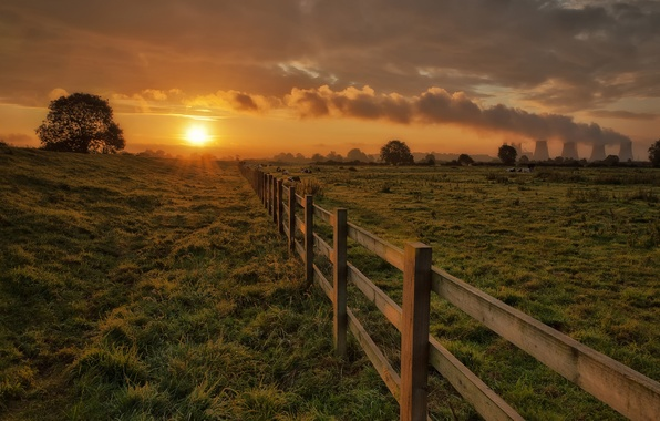 Picture the sky, grass, the sun, clouds, trees, sunset, pipe, smoke, the fence, the evening, cows, ...