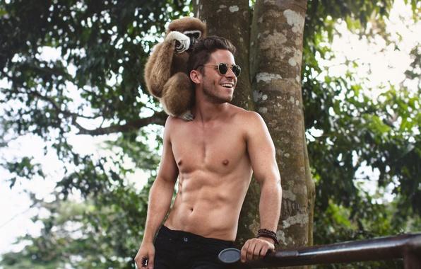 Picture summer, smile, glasses, monkey, male, guy, monkey, torso, press