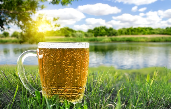 Picture greens, summer, grass, the sun, trees, beer, mug, river