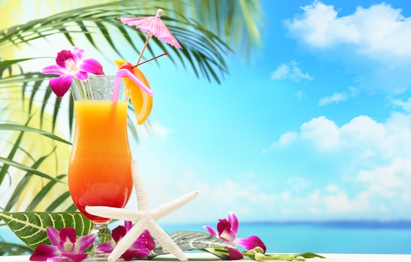 Photo Wallpaper Fruit Paradise Drink Beach Cocktail Sea
