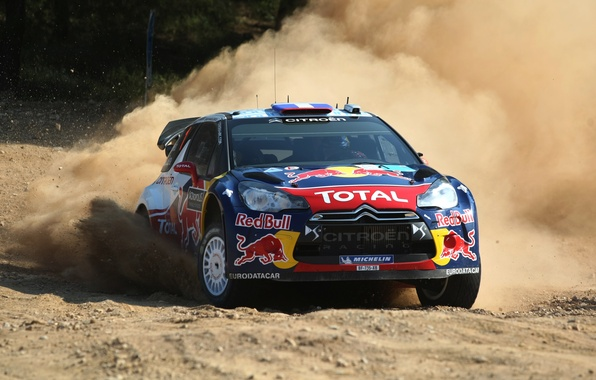 Picture Auto, Dust, Sport, Machine, Race, Skid, Citroen, Red Bull, DS3, WRC, Rally, Rally, The front
