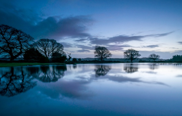 Photo wallpaper reflection, before the dawn, trees, blue, Night, clouds, the sky, river, forest