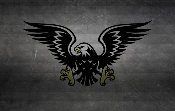 Picture strip, the dark background, bird, black and white, wings, predator, claws, hawk, eagle, hawk