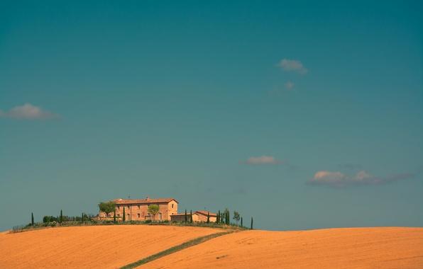 Picture field, the sky, trees, house, Italy, farm, Tuscany