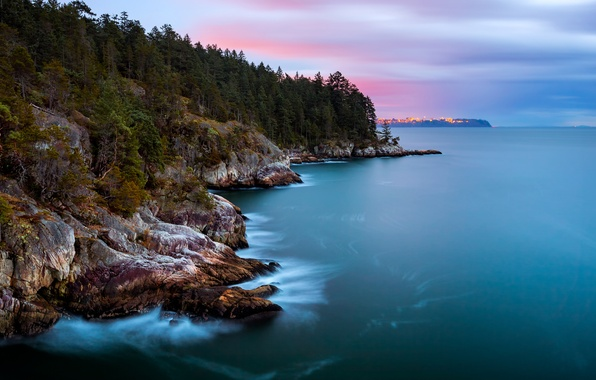 Picture forest, the sky, trees, clouds, the city, lights, Strait, the ocean, rocks, shore, island, the …