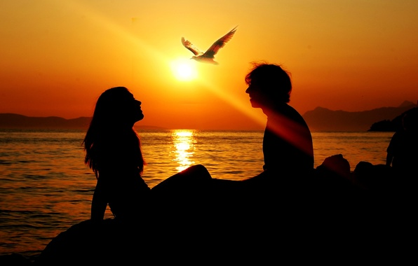 Picture sea, summer, freedom, girl, the sun, love, sunset, bird, ray, Seagull, silhouette, male, sunset, together8