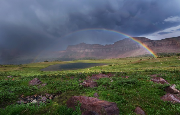 Picture the sky, grass, clouds, flowers, mountains, clouds, lake, stones, rainbow