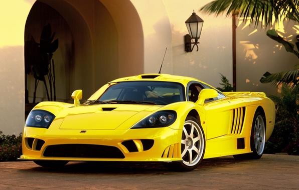 Picture Yellow, Sport, Saleen