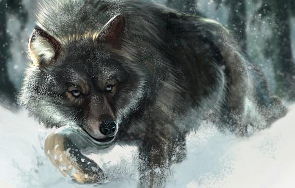 Photo wallpaper Animals, Snow, Figure, Wolf