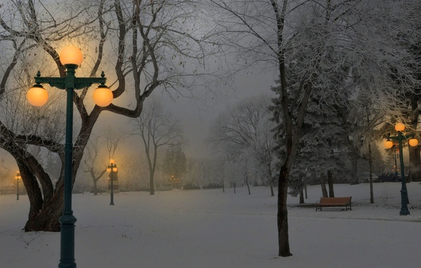 Picture light, snow, Park, Winter, lights, benches