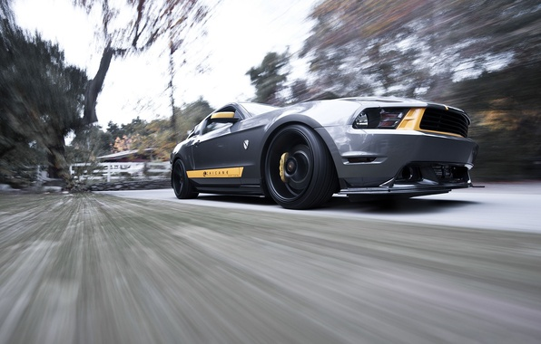 Picture speed, Mustang, Ford, Mustang, silver, muscle car, Ford, the front part, silvery