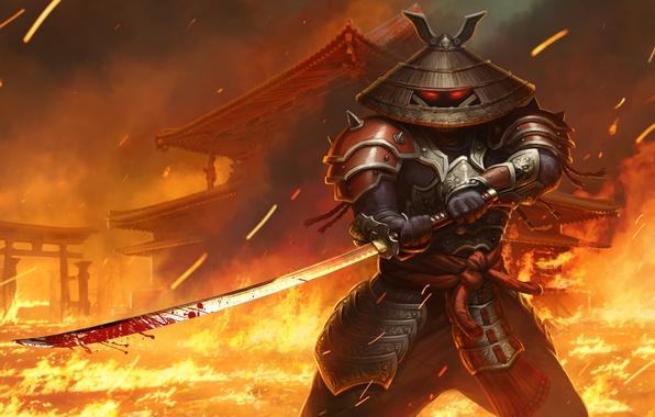 Picture fire, sword, katana, hat, samurai, juggernaut wars, age