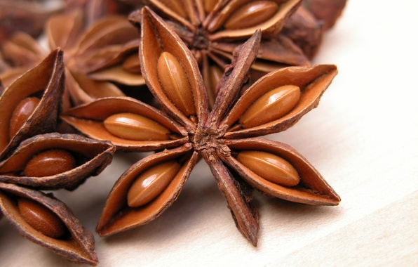 Picture fruit, stars, star anise, Anis, spice