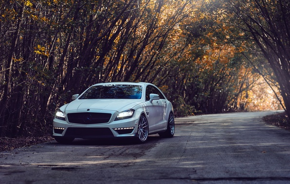 Picture road, trees, tuning, Mercedes, mercedes cls 63 amg