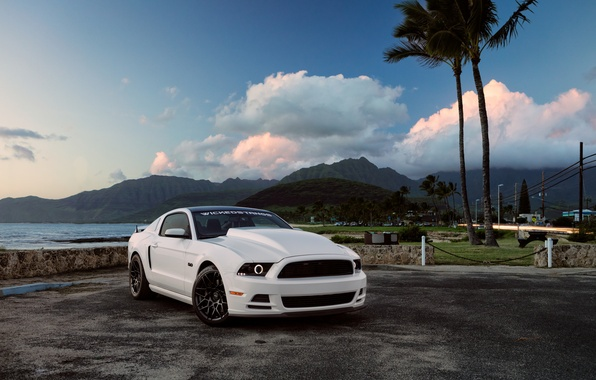 Picture Mustang, Ford, Muscle, Car, Hawaii, Front, 5.0, White