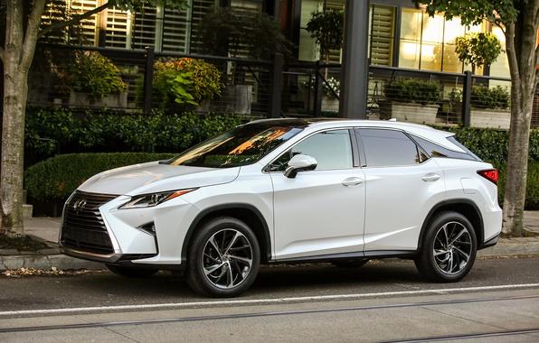 Picture Auto, White, Lexus, Machine, Car, 350, 2016, Lexus RX