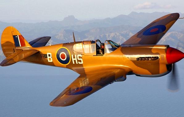 Picture flight, the plane, landscape, fighter, pilot, P-40 Kittyhawk