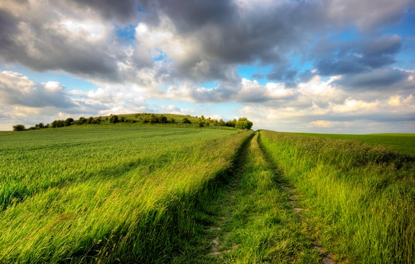 Picture road, greens, field, summer, the sky, the sun, clouds, joy, trail, dal, plain, day, space, …