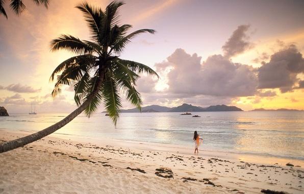 Picture Beach, Palma, Seychelles