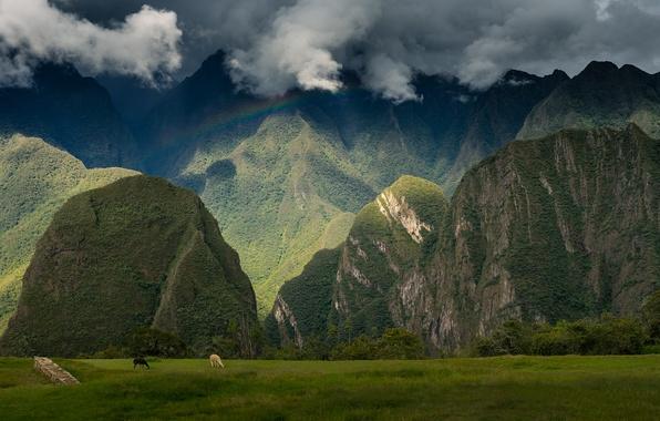 Picture the sky, landscape, mountains, city, view, rainbow, ruins, ancient, Peru, Peru, Machu Picchu, sanctuary, travel, …