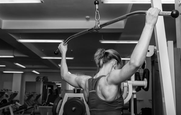 Picture back, workout, gym, bodybuilder