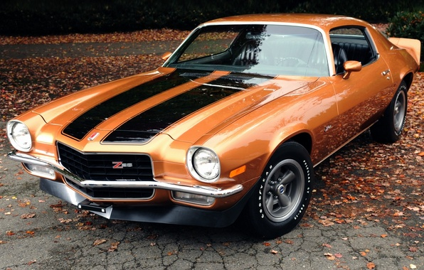 Picture leaves, orange, background, coupe, Chevrolet, Camaro, Chevrolet, 1971, Camaro, the front, Muscle car, Muscle car, …