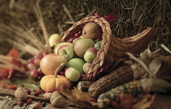 Picture autumn, leaves, berries, basket, apples, corn, harvest, pumpkin, nuts, vegetables, pear, autumn, leaves, nuts, pears, …