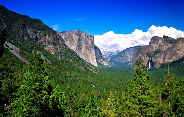 Picture forest, mountains, nature, waterfall, mountains, Yosemite NP, windows-8