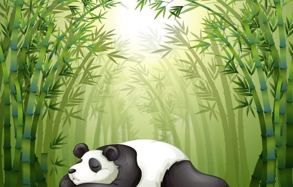 wallpaper stay the bamboo trees panda sleep weed images for desktop section. Black Bedroom Furniture Sets. Home Design Ideas
