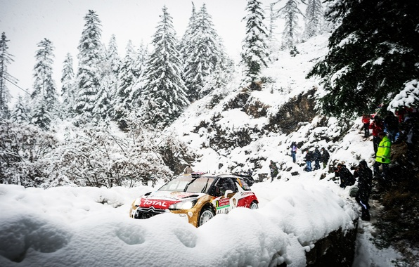 Picture Winter, Snow, Forest, Sport, Machine, People, Tree, Citroen, DS3, WRC, Rally, Rally, Total
