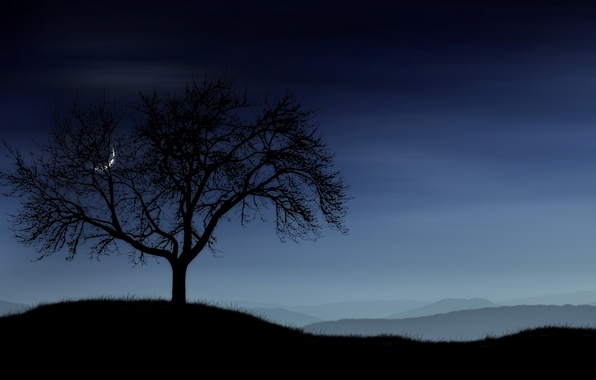 Picture the sky, grass, tree, The moon, Hills