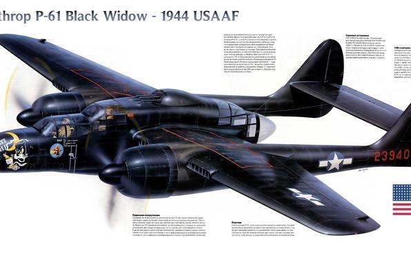 "Picture fighter, war, night, Northrop, P-61, Black Widow, 1944, period, The second world, ""Black Widow"""