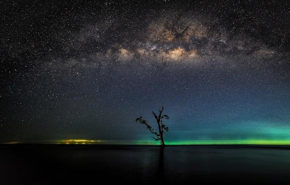 Picture stars, lake, tree, horizon, Bay, The Milky Way, secrets