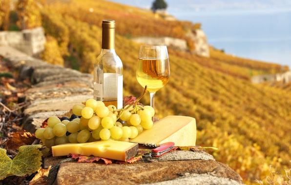 Picture wine, food, cheese, grapes