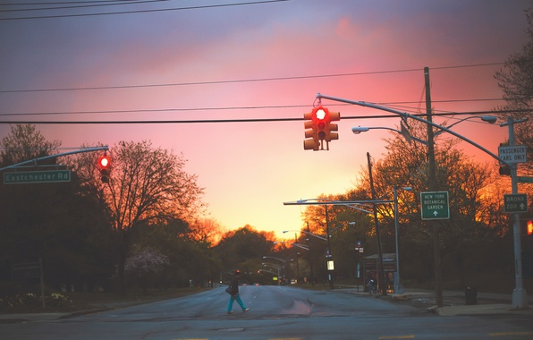 Picture city, trees, signs, dusk, streets, branches, urban, traffic lights, bus stop, lamp posts, pedestrian