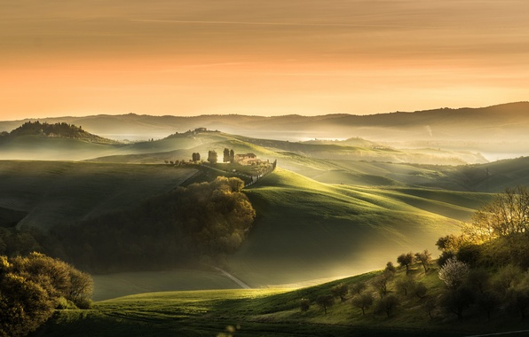 Picture fog, field, spring, morning, Italy, April, estate, Tuscany