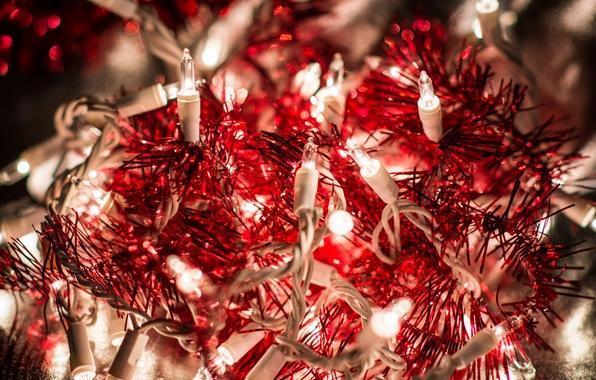 Picture winter, the rain, macro, light, red, lights, garland, tinsel, holidays, bokeh