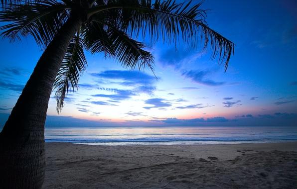 Picture sea, beach, the sun, landscape, nature, the ocean, dawn, shore, beach, sea, landscape, nature, dawn, …